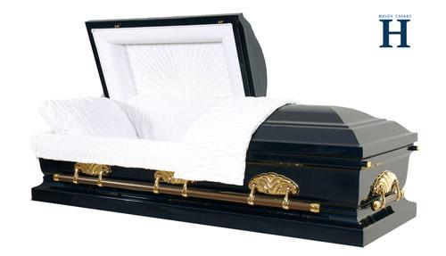 metal casket mc119